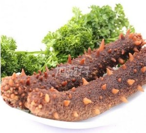 up to $35 offRed Sea Cucumber@ XLSeafood