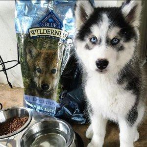30% OffBlue Buffalo Dog and Cat Pet Food Sale