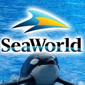 立减$50奥兰多海洋世界套票6.7折热卖