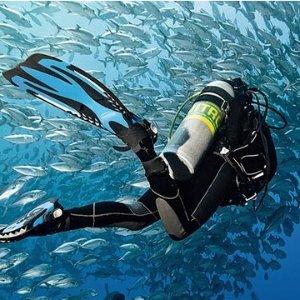 $121PADI开放水域潜水认证课程 Santa Cruz