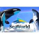 Free! 2018 FREE SeaWorld Orlando Preschool Card