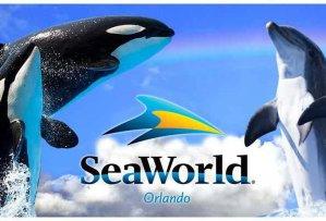 Free!2018 FREE SeaWorld Orlando Preschool Card